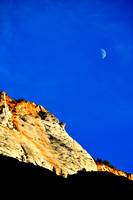 Moon Over Zion - Portrait